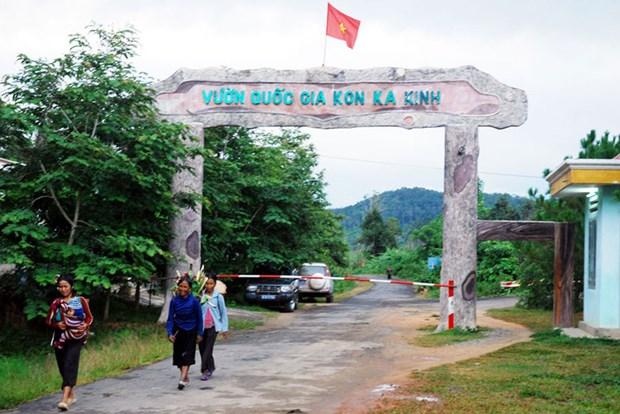 努力推动嘉莱省旅游业进入新发展阶段 hinh anh 1