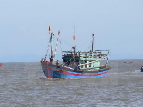 越南强烈反对对渔民使用武力或以武力威胁渔民的行为 hinh anh 1