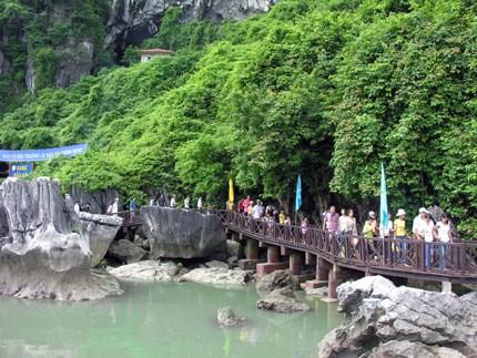 今年前7月广宁省接待游客量逾660万人次 hinh anh 1