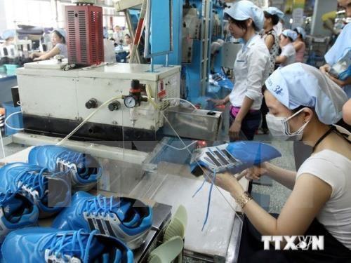 越南着力提升皮革鞋业的附加值 hinh anh 1