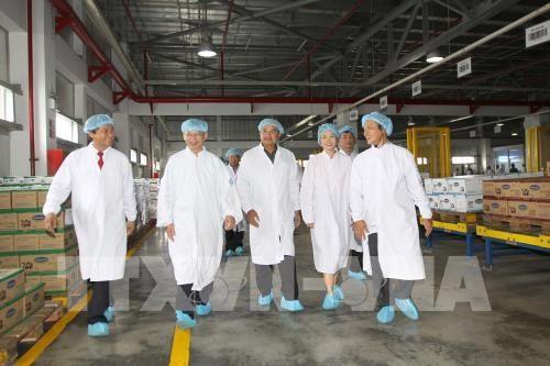 越南乳业股份公司加大对老挝市场出口力度 hinh anh 1
