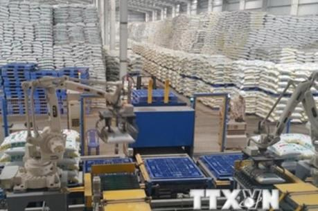 越南对进口DAP和MAP化肥产品征收临时保障措施税 hinh anh 1
