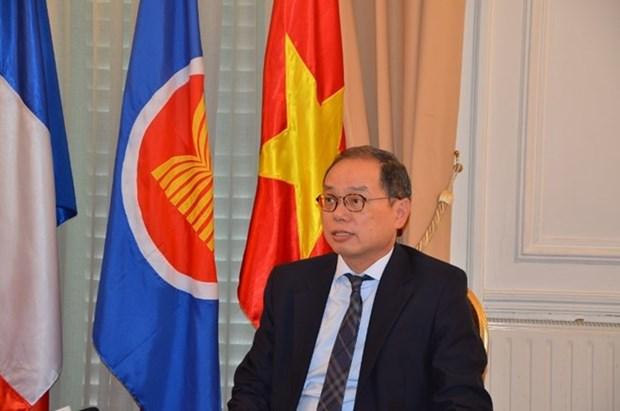 越南代表成功担任东盟驻巴黎委员会轮值主席 hinh anh 1