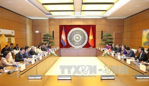 越南国会副主席丛氏放同柬埔寨参议院第一副主席奈北纳举行会谈 hinh anh 1