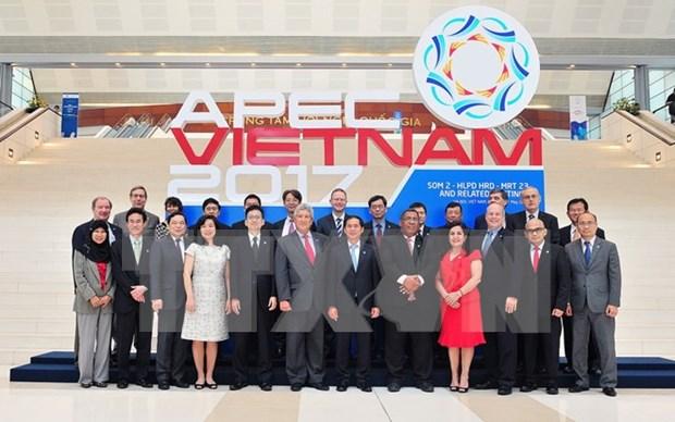 2017年APEC第三次高官会及相关会议将在胡志明市举行 hinh anh 1