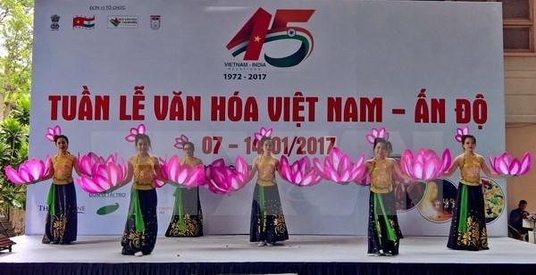 越南与印度增进音乐交流 hinh anh 1