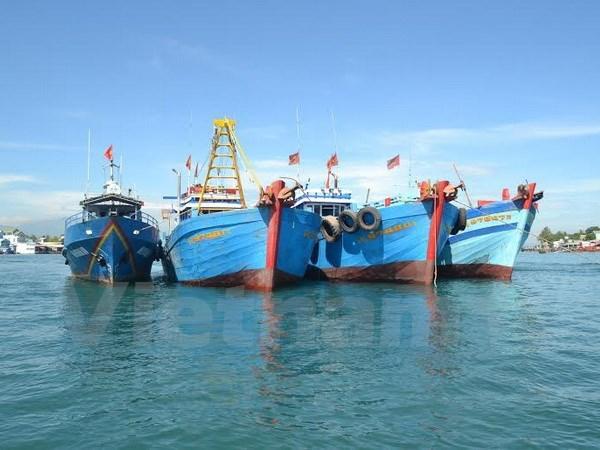 广南省发挥各个沿海经济区的潜力 hinh anh 1