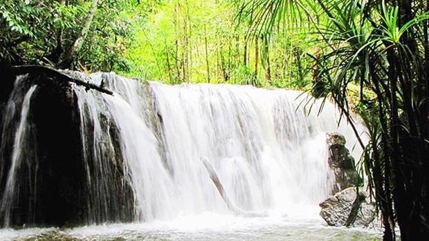 越南富国岛不仅有海 hinh anh 1