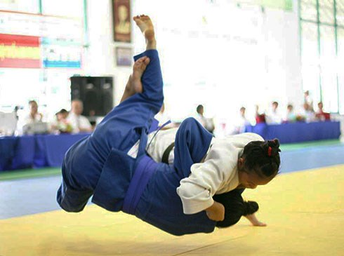 第二届亚洲柔道锦标赛在河内开赛 hinh anh 1