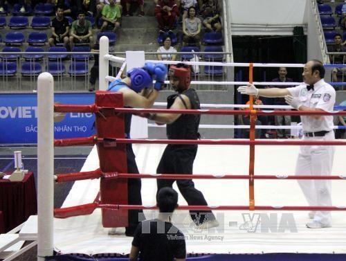 300多名运动员参加第26次越南全国传统武术锦标赛 hinh anh 1