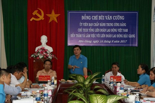 越南劳动总联合会工作代表团赴后江省考察 hinh anh 1