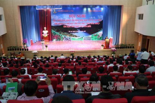 林同省成为全国高科技农业生产的典范 hinh anh 1