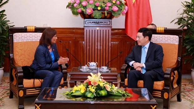 越南政府副总理兼外交部长范平明会见东帝汶新任驻越大使 hinh anh 1
