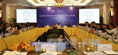 APEC SOM 3: 反恐工作组会议强调航空安全等问题 hinh anh 1