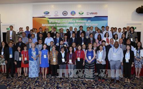 2017APEC年:数字时代农业生物技术研讨会在芹苴举行 hinh anh 1