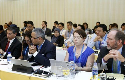 2017年APEC标准一致化分委会良好法规规范第十次会议在胡志明市举行 hinh anh 2