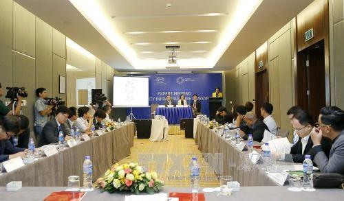 2017年APEC会议:越南希望借鉴高质量基础设施投资的国际经验 hinh anh 1