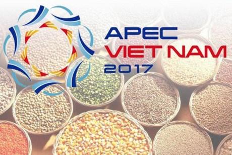 越南继续推动实施2017年亚太经合组织系列会议的优先内容 hinh anh 1