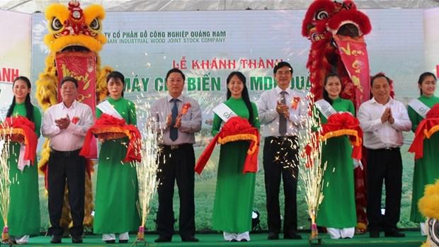 越南中部与西源地区最大木材加工厂正式投运 hinh anh 1