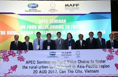 2017年APEC会议:大力推动食品价值链 促进亚太地区农村与城市发展 hinh anh 3