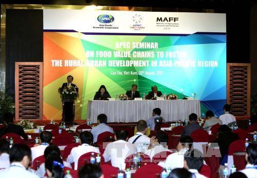 2017年APEC会议:大力推动食品价值链 促进亚太地区农村与城市发展 hinh anh 1