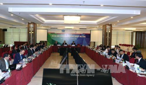 2017年APEC会议:努力实现渔业可持续发展 hinh anh 1