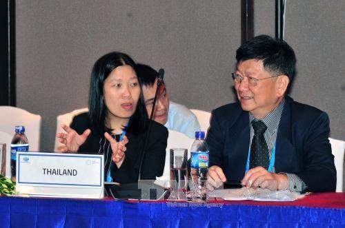 2017年APEC卫生工作组会议: 促进制度改革 打造健康社区 hinh anh 3