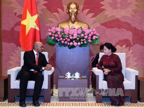 越南国会主席阮氏金银会见古巴驻越大使和莫桑比克总检察长 hinh anh 1