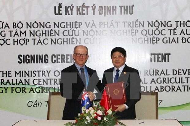 2017年APEC会议:越南与澳大利亚承诺在农业研究领域建立长期合作 hinh anh 1
