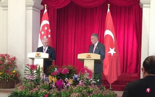 新加坡和土耳其双边自贸协定10月生效 hinh anh 1