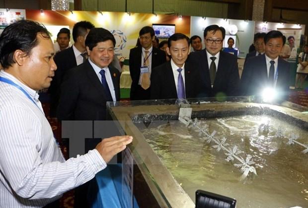2017年APEC会议:农业新技术和粮食产品展在芹苴市开展 hinh anh 1