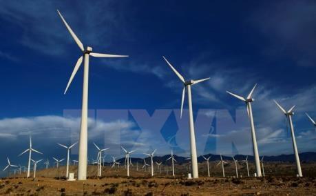 韩国企业希望对薄辽省投资开展风力发电项目 hinh anh 1