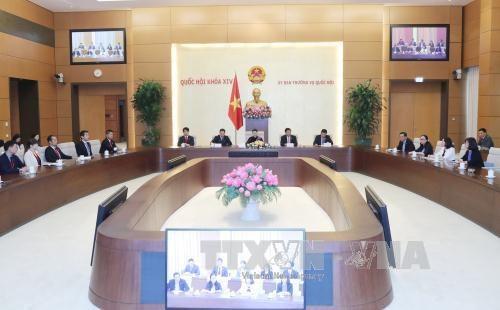 越南国会主席阮氏金银会见日本自由民主党青年局年轻议员代表团 hinh anh 3