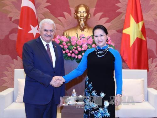 国会主席阮氏金银会见土耳其总理耶尔德勒姆 hinh anh 1