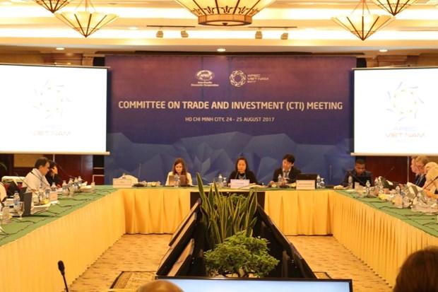 APEC贸易投资委员会会议:越南提出关于促进跨境电子商务便利化倡议 hinh anh 1