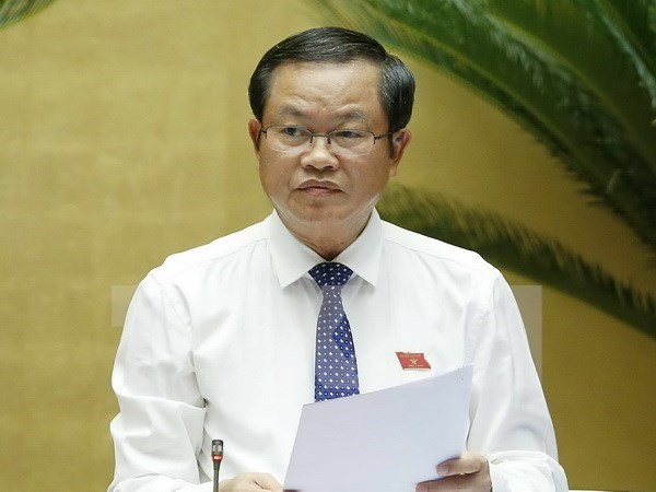 越南国会高级代表团对南非进行工作访问 hinh anh 1