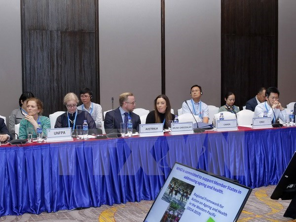 2017年APEC第三次高官会进入第九天 hinh anh 1
