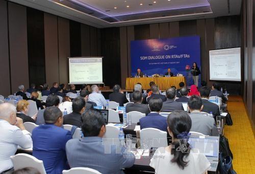 2017年APEC会议:充分利用自由贸易协定面向建立亚太自由贸易区 hinh anh 1