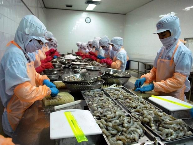 前八个月越南水产品出口金额达51.3亿美元 hinh anh 1