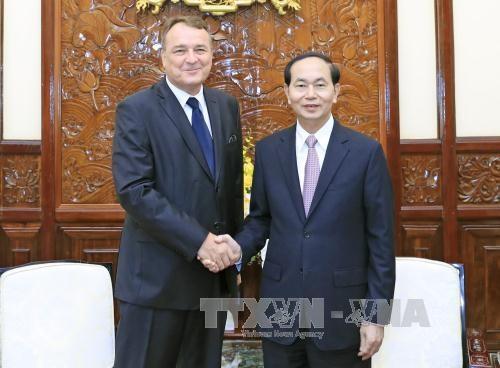 越南国家主席陈大光会见斯洛伐克驻越大使 hinh anh 1