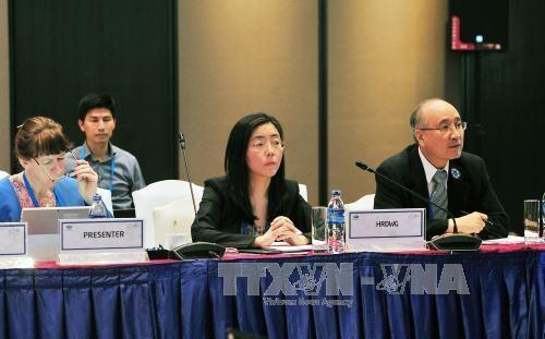 2017年APEC第三次高官会第一天会议:为领导人非正式会议做出全面准备 hinh anh 1