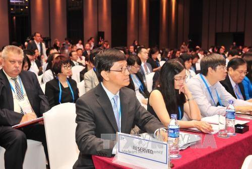 胡志明市希望继续为APEC共同体建设做出切实贡献 hinh anh 1