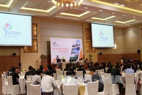 越柬建交50周年:加强越南与柬埔寨旅游合作 hinh anh 1