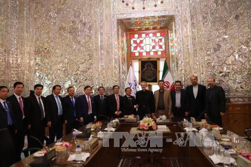 越南国会副主席杜伯巳对伊朗进行正式访问 hinh anh 1