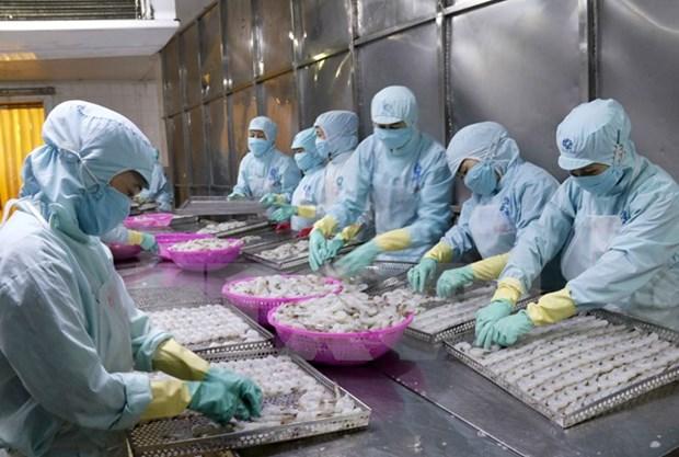 越南水产品出口力争突破80亿美元大关 hinh anh 1