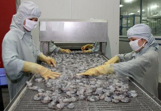 亚洲成为越南虾行业的新兴销售市场 hinh anh 1