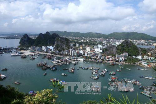 广宁省将云屯特别经济行政区建设成绿色海洋岛屿城市 hinh anh 1