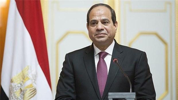 埃及媒体:埃及总统访越为越埃关系开辟新篇章 hinh anh 1