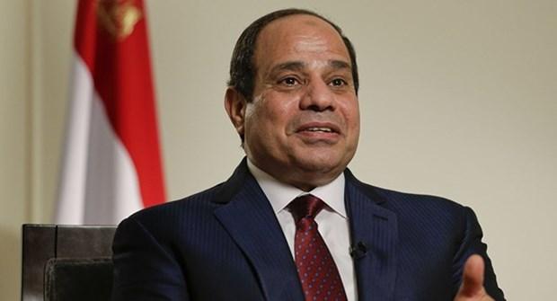 埃及总统对越南进行国事访问成为越埃关系历史上的重要里程碑 hinh anh 1