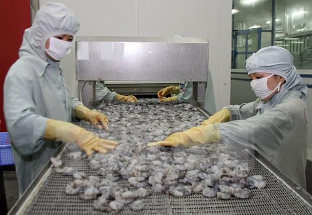 越南虾类产品出口占全球虾类出口总额的45% hinh anh 1